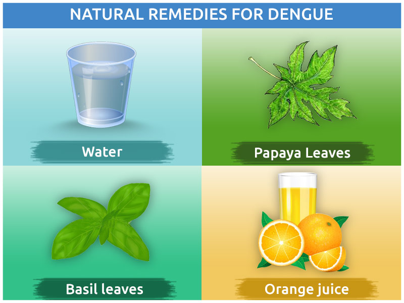 The Ideal Diet Tips for Dengue Patients