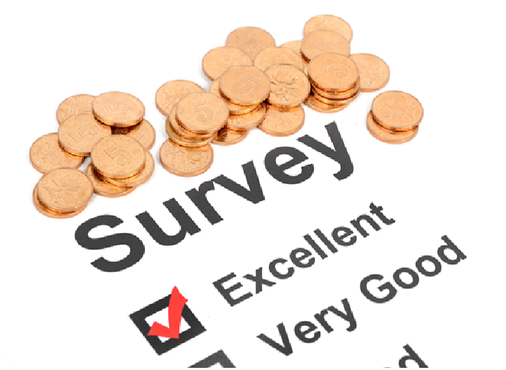 Earning More with Survey Sites