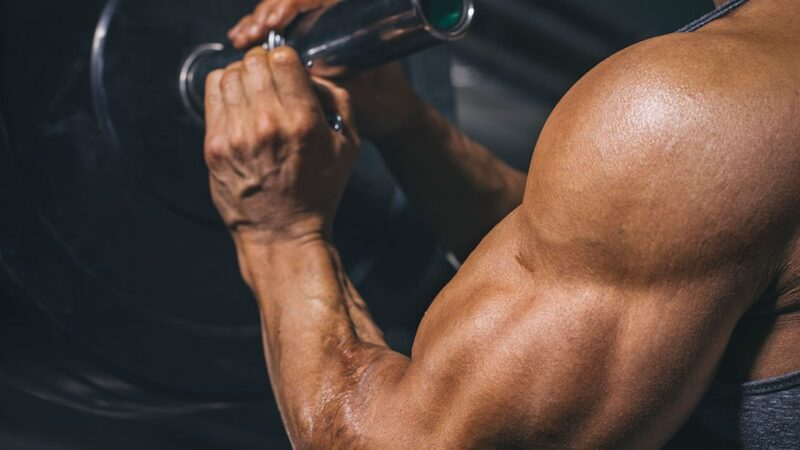 Steroids Good For Building Muscles